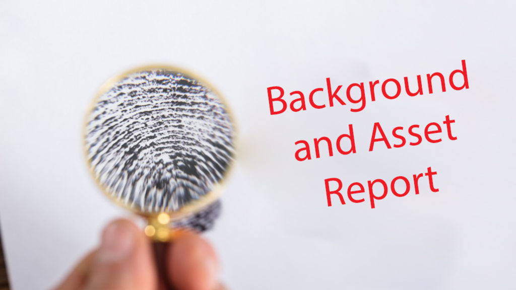 Background and Asset Report